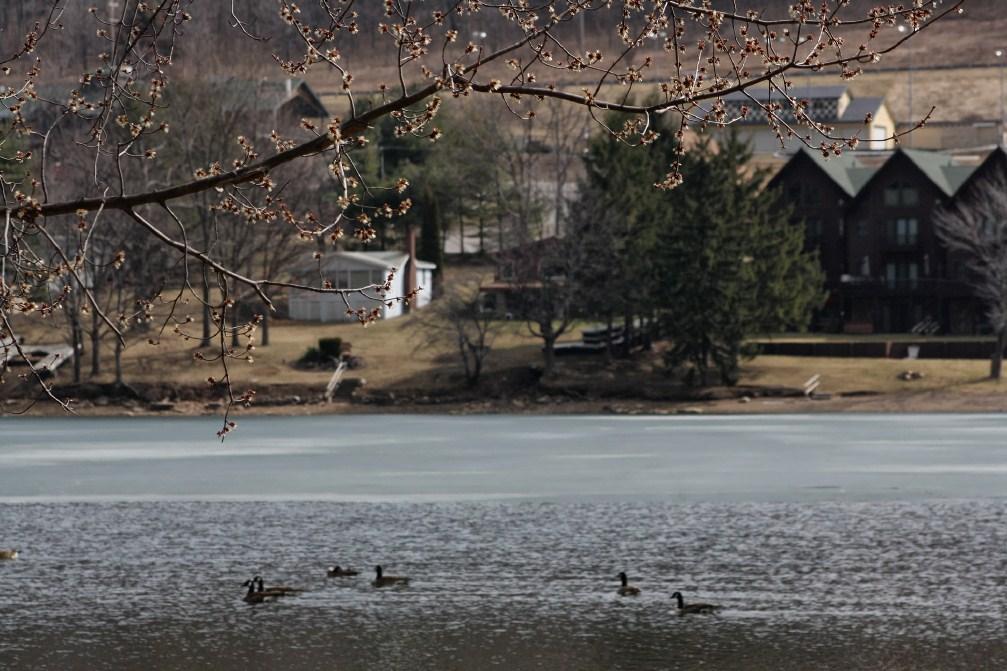 Deep Creek Lake Springtime