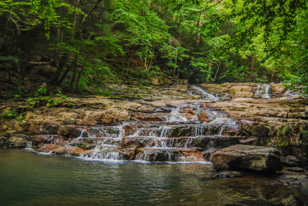 potomac state forest